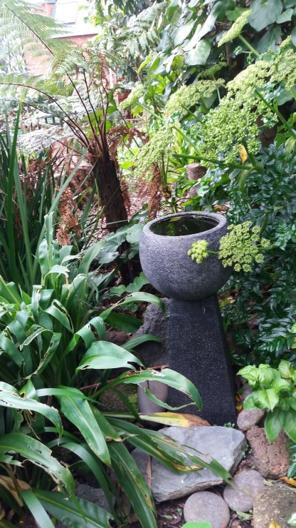 Element of surprise in the healing garden