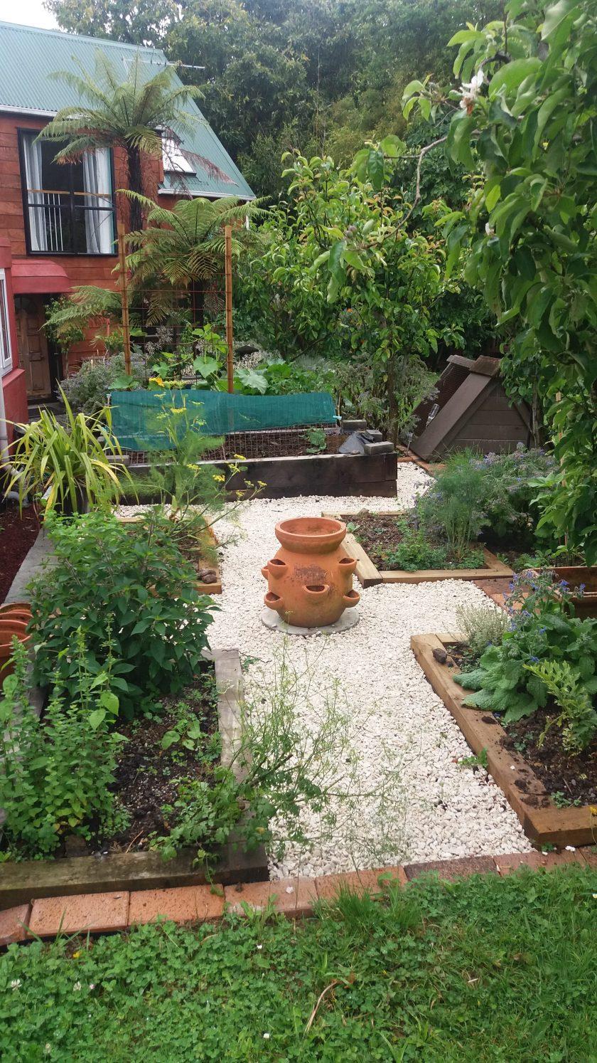 Healing garden herbs
